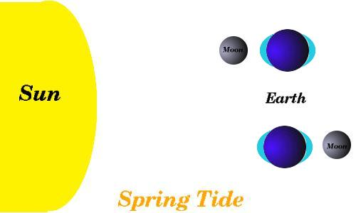 101 clearinghouse : spring tide diagram - findchart.co